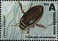 Stamp of Belarus - 2019 - Colnect 856965 - Great Diving Beetle Dytiscus marginalis.jpeg