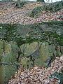 Steinbruch Kothener Busch 2.jpg