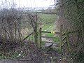 Stile and footpath - geograph.org.uk - 663885.jpg