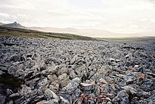 A field of blue-grey and reddish boulders.