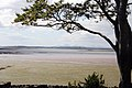 Strangford Lough (221972712).jpg