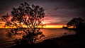 Sunrise - Port Lincoln - South Australia.jpg