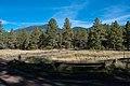 Sunset Trail No. 23 (21755387272).jpg
