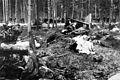 Suomen Ilmavoimat osti kevättalvella1943 Saksasta 24 Junkers Ju 88–A4 -pommikonetta. Siirtolennolla Saksasta Suomeen yksi koneista putosi konevian saatuaan 23.04.1943 Saulkrastiin - panoramio.jpg