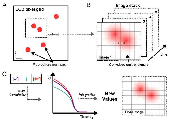 Super-resolution optical fluctuation imaging - Wikipedia