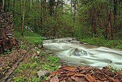 Susara river - panoramio.jpg
