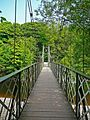 Suspension Bridge 2 (2545249027).jpg