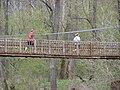 Suspension Bridge P4180045.jpg