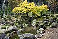 Suwa Yakata-ato Garden of Ichijodani Asakura Family Historic Ruins03s3s4592.jpg