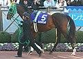 Suzuka Mambo 20051225P1.jpg