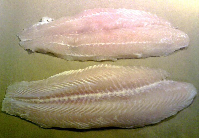 File swai wikipedia for Swai fish wiki
