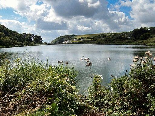 Swanpool - geograph.org.uk - 1977842