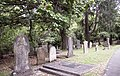Symonds Street Cemetery, Auckland, 2016-01-21.jpg