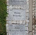 Tabliczka drzewka 547 Hany Svirsky w Parku Ocalałych w Łodzi MZW DSC03219.jpg
