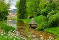 Teich am Michaelsberg - panoramio (2).jpg