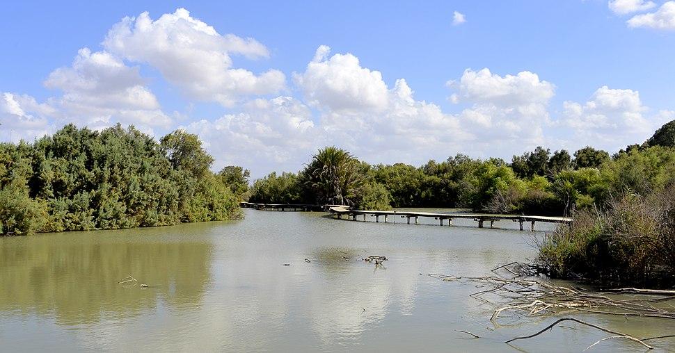 Tel Afek - The big swamp