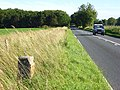 The A360 - geograph.org.uk - 491337.jpg