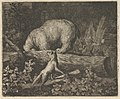 The Bear's Snout and Paws Are Caught in the Trunk of a Tree from Hendrick van Alcmar's Renard The Fox MET DP837695.jpg