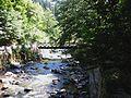 The Borjomula River in the Borjomi Park 2.JPG