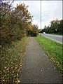 The Ebley bypass and cycle track ... once a railway route. - Flickr - BazzaDaRambler.jpg