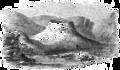 The Mound, Rathlin Island (transparent).png