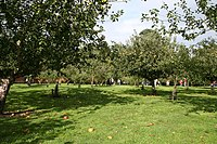 The Orchard, Hanbury Hall - geograph.org.uk - 251058.jpg
