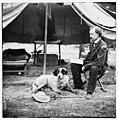 The Peninsula, Va. Lt. George A. Custer with dog LOC cwpb.01554.jpg