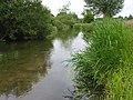 The River Wylye - geograph.org.uk - 478745.jpg