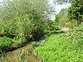 The brook next to Brook Lane - geograph.org.uk - 799723.jpg