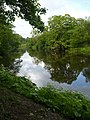 The river Coquet, Warkworth - geograph.org.uk - 1320755.jpg