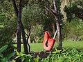 The secret garden... (4144809861).jpg