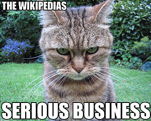 The Wikipedias. They are serious business.