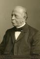 Theodor Fontane by E. Bieber, 1894.png