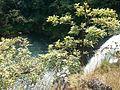Thoseghar Falls.jpg