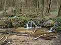 Tiefenellern P4164172.jpg