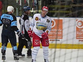 Anton Gustafsson Swedish ice hockey player