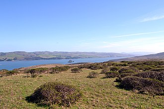 Tomales Point - Image: Tomales Bay as viewed from Tomales Point Trail