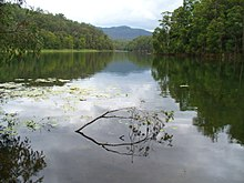 Toonumbar Dam viewed from Bells Bay Camping Area. Image contributed by Ayesha Joy Clifford..JPG