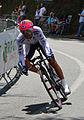Tour de France 2014 (15263130819) (cropped).jpg
