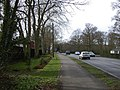 Tree planting on St Neots Road - geograph.org.uk - 705090.jpg