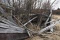 Trees grow through shelter (4666ebd5-292e-4a5e-a983-e0b754953c17).jpg