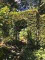 Tuin Oosterhouw - haag - juli 2020.jpg