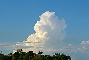 Cumulus congestus cloud - An example of a turkey tower in the distance