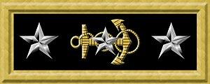 Stephen Clegg Rowan - Image: USN Vice Admiral rank insignia