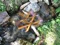 File:Un petit moulin dans un ruisseau des Ecrins MVI 3710.ogv