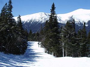 Wildcat Mountain Ski Area - Image: Upperwildcat 2006 0409a