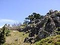 Uroase Gusuku, Okinawa.jpg