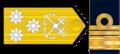 VL-ARA.png