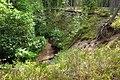 Vanajõgi ja Vanajõe org Tihu looduskaitsealal.jpg