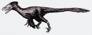 English: velociraptor Deutsch: Velociraptor